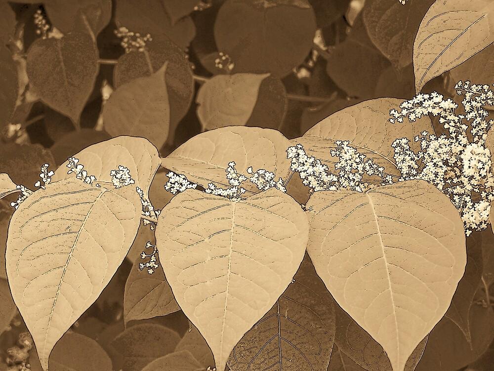 Autumn Leaves 2 by Gene Cyr