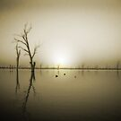 Pinhole Reflections by Evanickelbridger