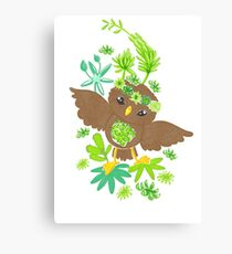 Owlet in the succulents Canvas Print