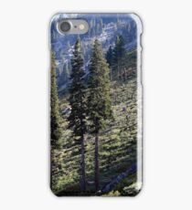 Open Hillside iPhone Case/Skin