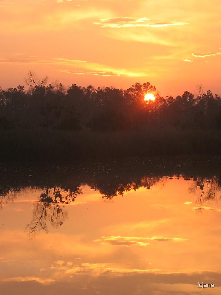 Sky in the Bayou by lcjane