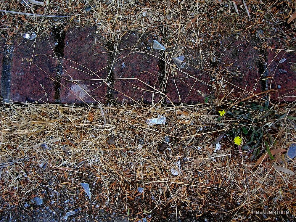 Forgotten Steps by heatherrinne