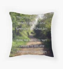 On the Path of Reflection  Throw Pillow