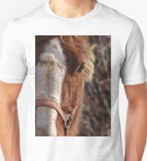 Belgian Baby Unisex T-Shirt