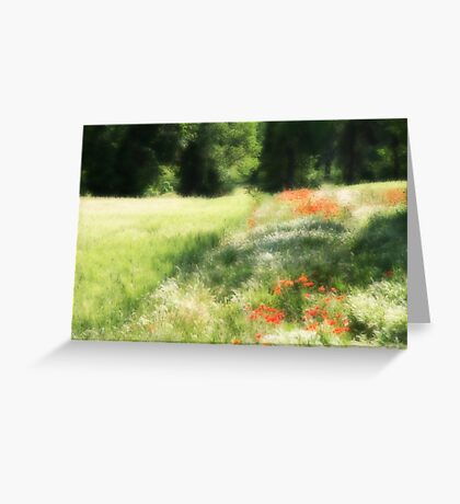 Provence Field Greeting Card