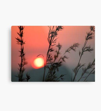 Last touch Metal Print