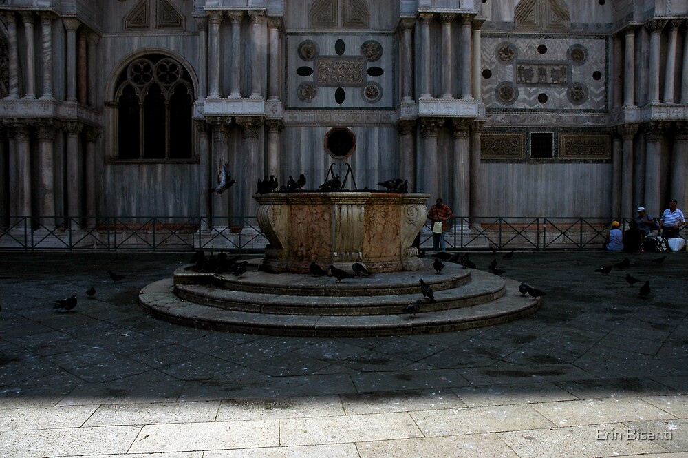 Bird in Venice by Erin Bisanti