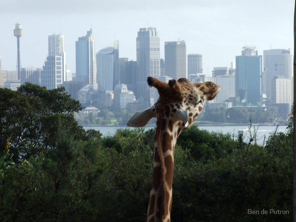 Giraffe and the City by Ben de Putron