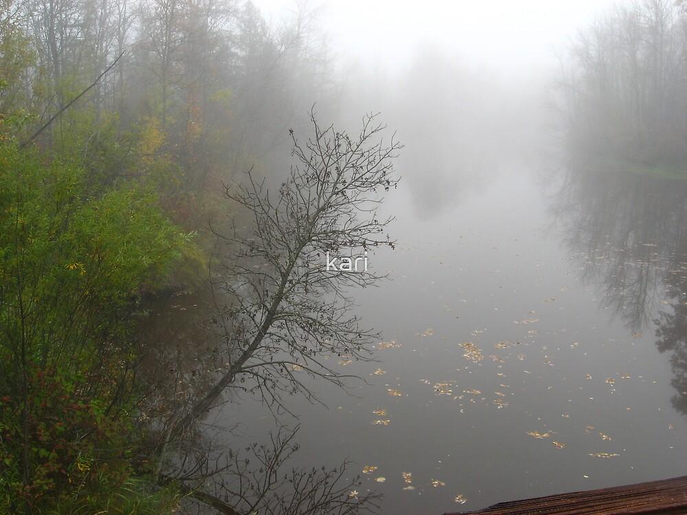 Misty River by kari