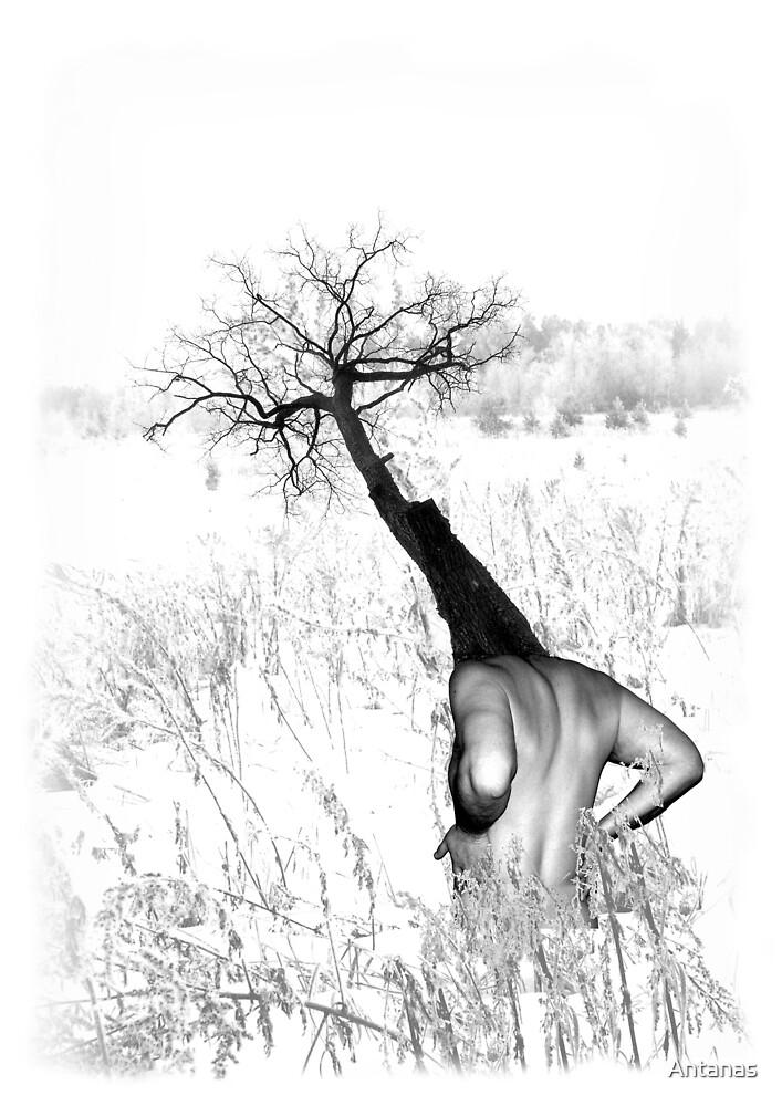 Silence by Antanas