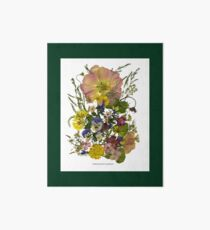 FRIENDSHIP'S GARDEN - A Floral Tribute for a Friend Art Board