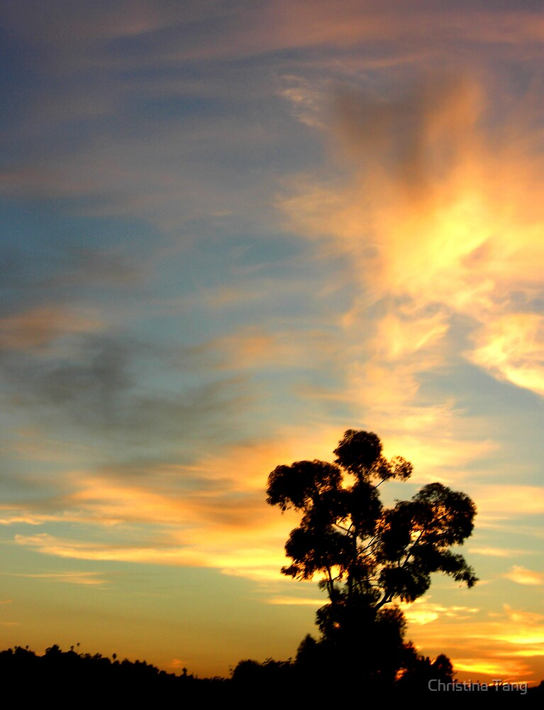 Tree silhouetted against the sunrise by Christina Tang