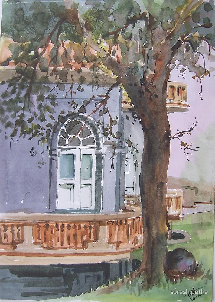 window by suresh pethe