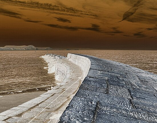 Inverted Harbour Wall At Lyme by lynn carter