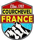SKI COURCHEVEL FRANCE SKIING MOUNTAINS HIKING CLIMBING 2 by MyHandmadeSigns