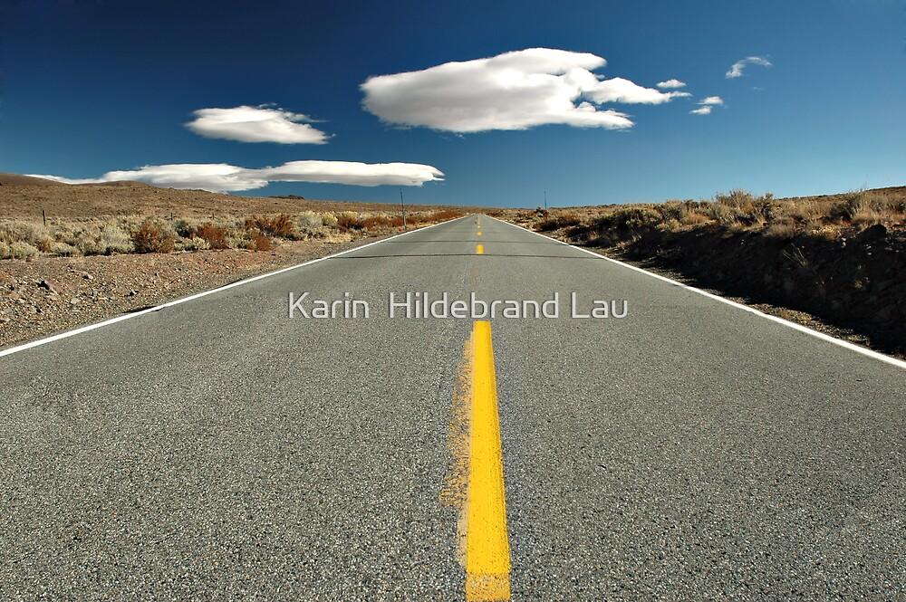 Desert Road by Karin  Hildebrand Lau
