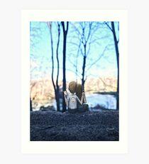 spring - central park Art Print