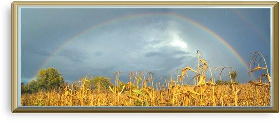 FULL RAINBOW by Starr1949