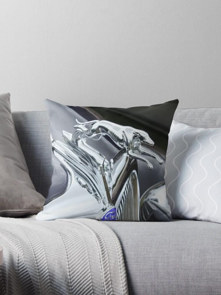 Old Greyhound by Jason Adams