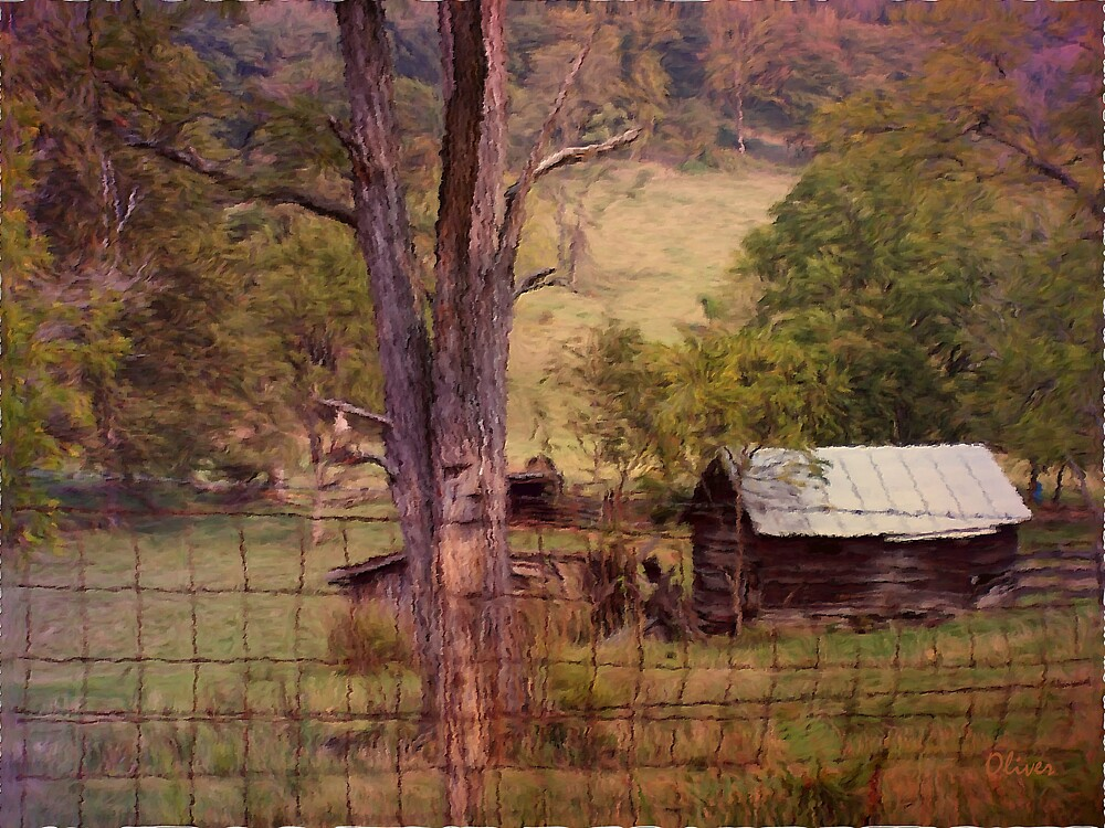 Old Wood And Tin Roofs by Charles Oliver