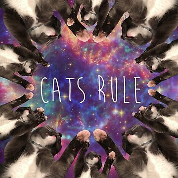 Cats Rule by FrannyGlass