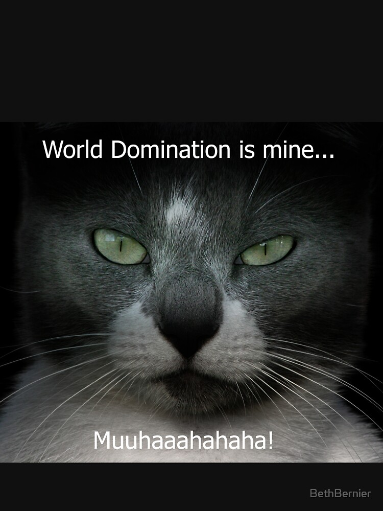 World Domination by BethBernier
