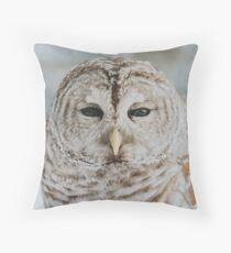 Mowat Throw Pillow