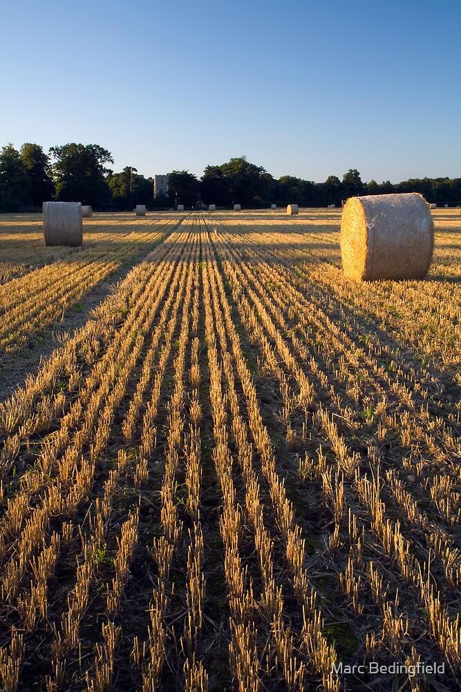Freston Harvest by Marc Bedingfield