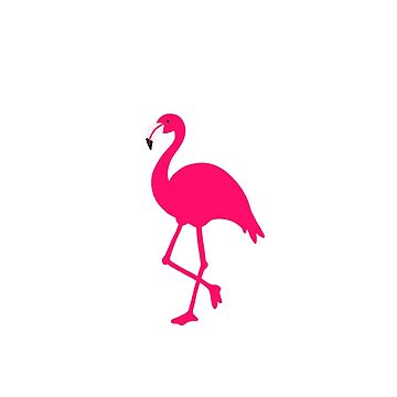 Flamenco rosa de jashirts