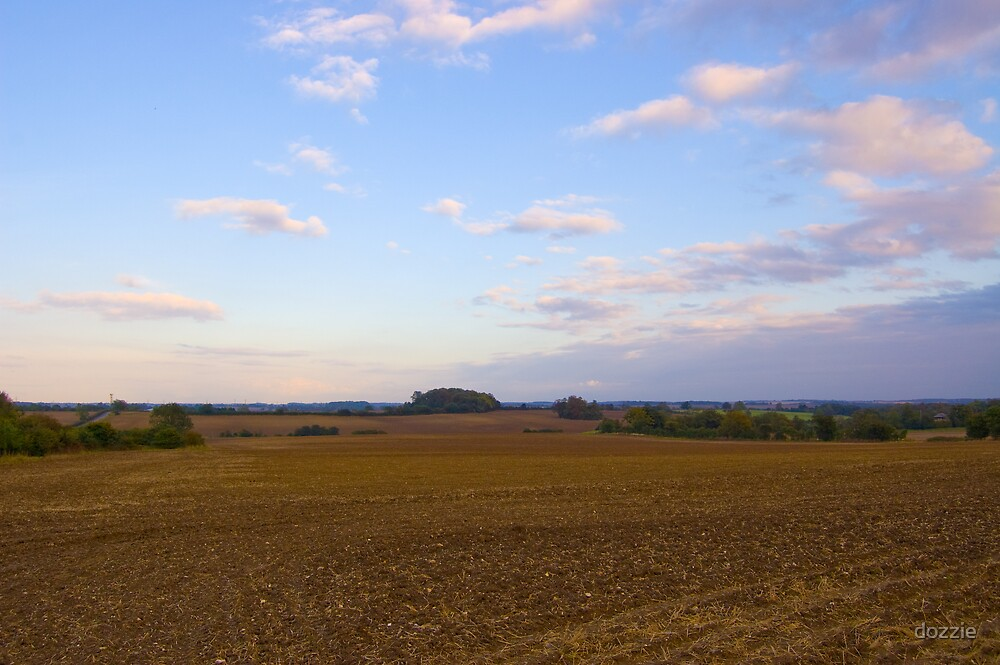 Countryside View by dozzie