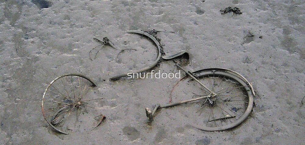 (Bi) Cycle of Life by snurfdood