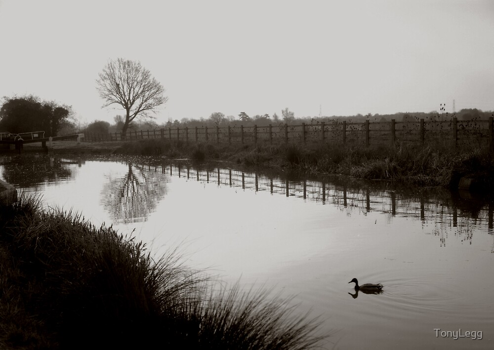 Canal at Dusk  by TonyLegg