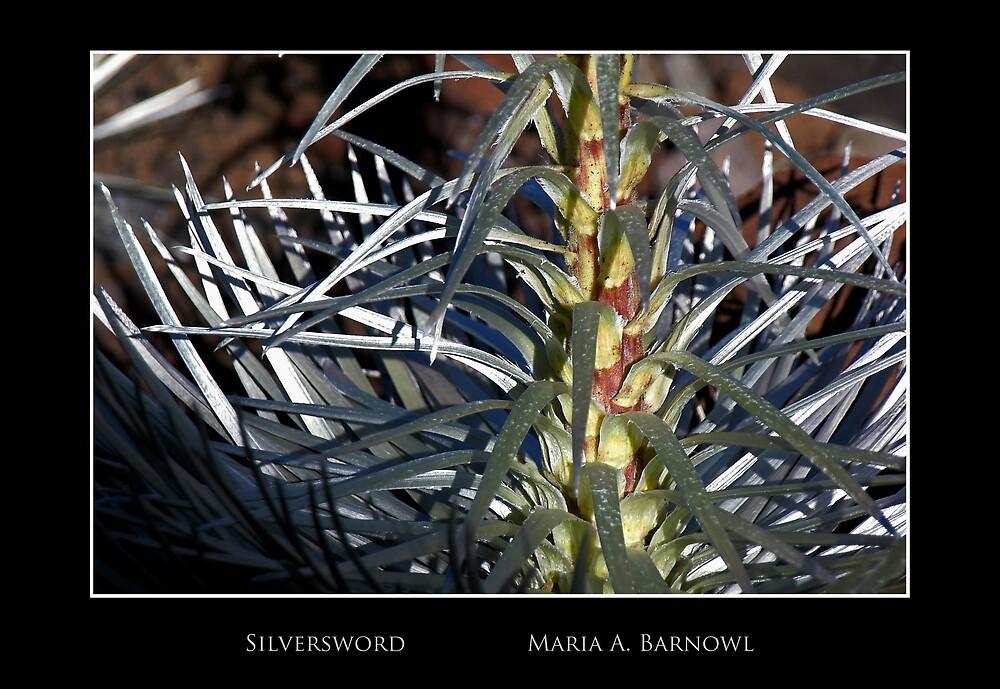 Silversword - Cool Stuff by Maria A. Barnowl
