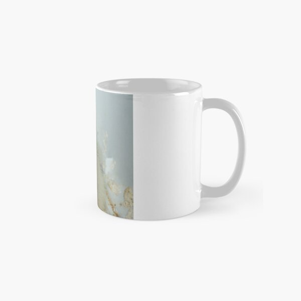 Birds- eggs- chicks- cockatiels Classic Mug