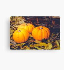 Three little pumpkins, autumn leaves and a basket Canvas Print