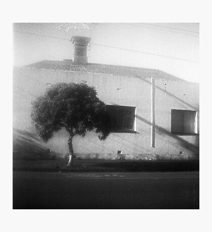 Rough House Photographic Print