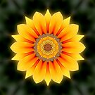 Kaleidoscopic flower by britishphotos