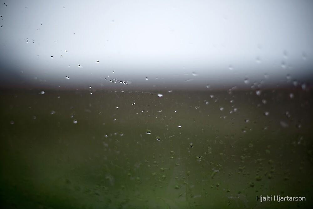 Drops in nature by Hjalti Hjartarson