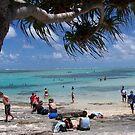 Mystery Island Beach by judygal