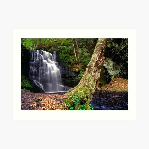 Bushkill Waterfall Art Print