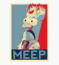 Meep Photographic Print