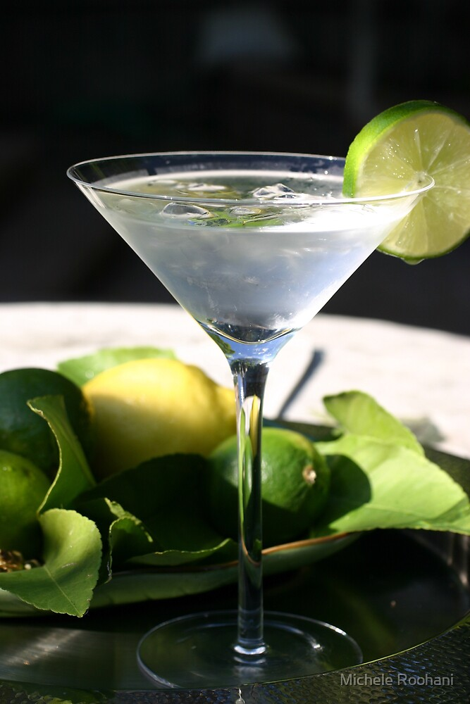 Summer Martini by Michele Roohani