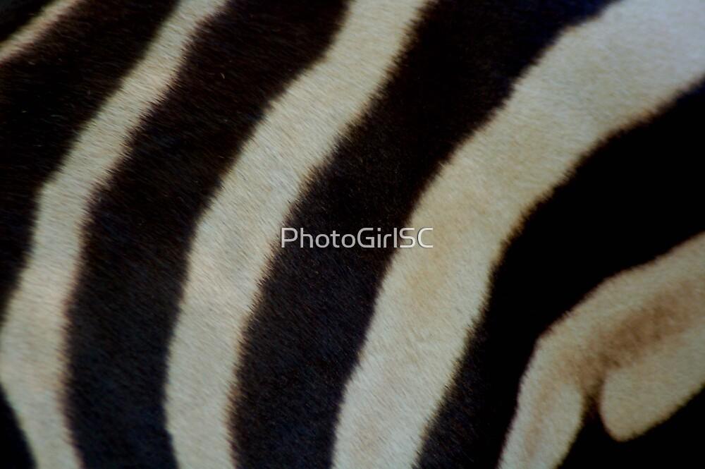 Zebra Skin by Bjana Hoey
