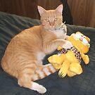 Garfield & Garfield by dachli