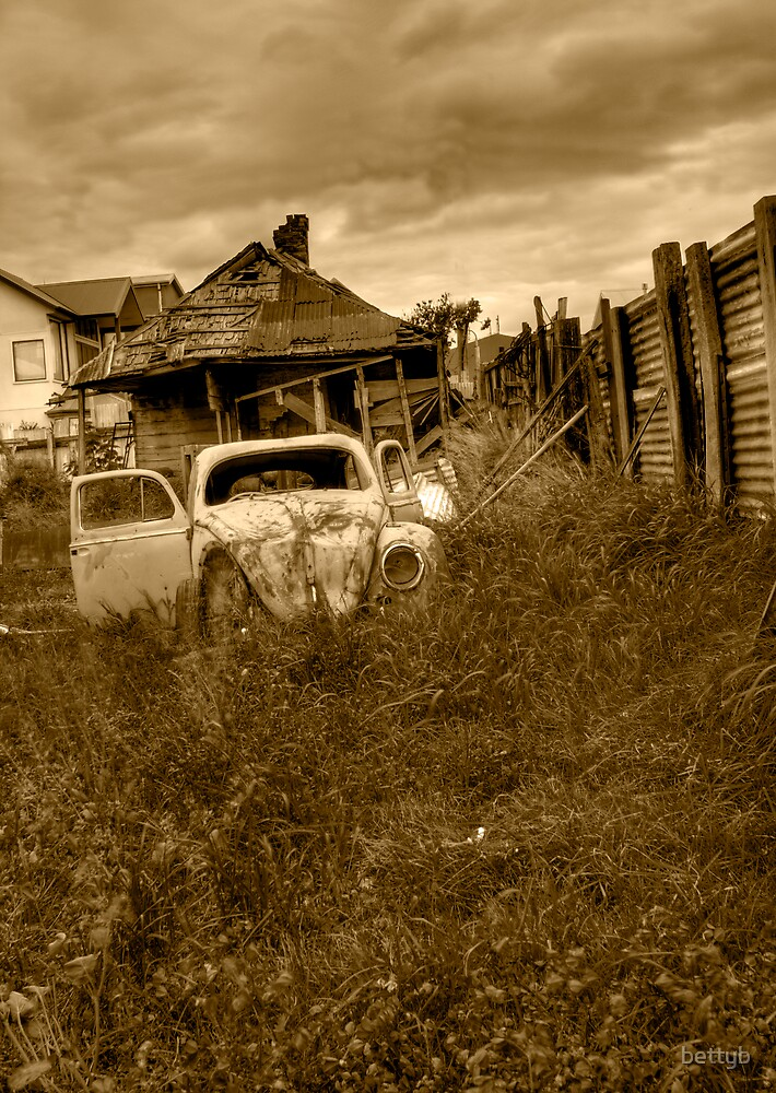 Abandoned house no 2 by bettyb