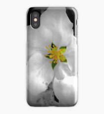 Speck of color, Apple tree blossom iPhone Case/Skin