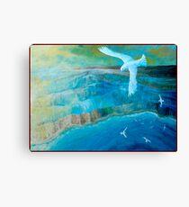 Seagulls. Canvas Print