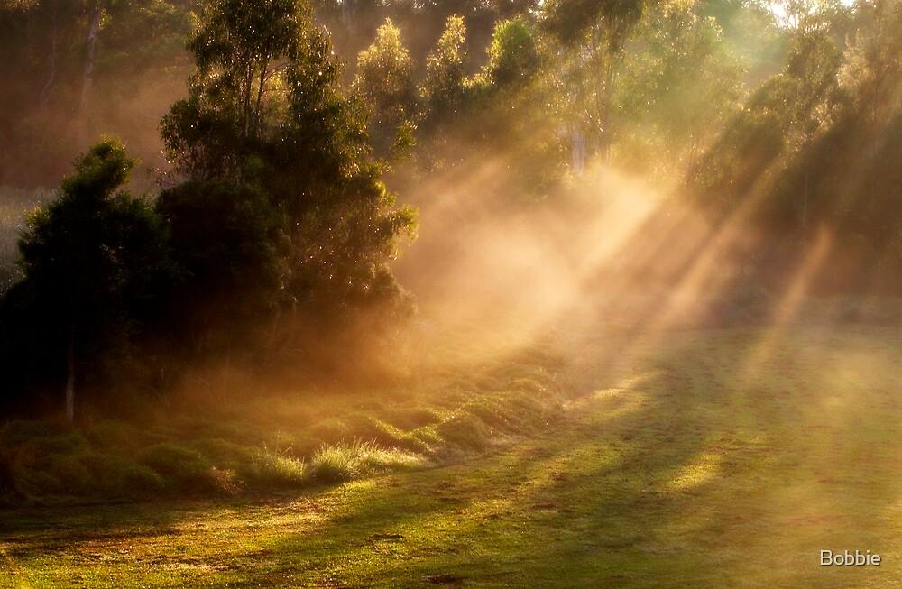 Sunrise by Bobbie