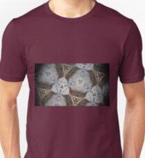 Still Thru A Kaleidoscope Lens n°10 Unisex T-Shirt