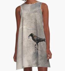 Crow Carries A-Line Dress